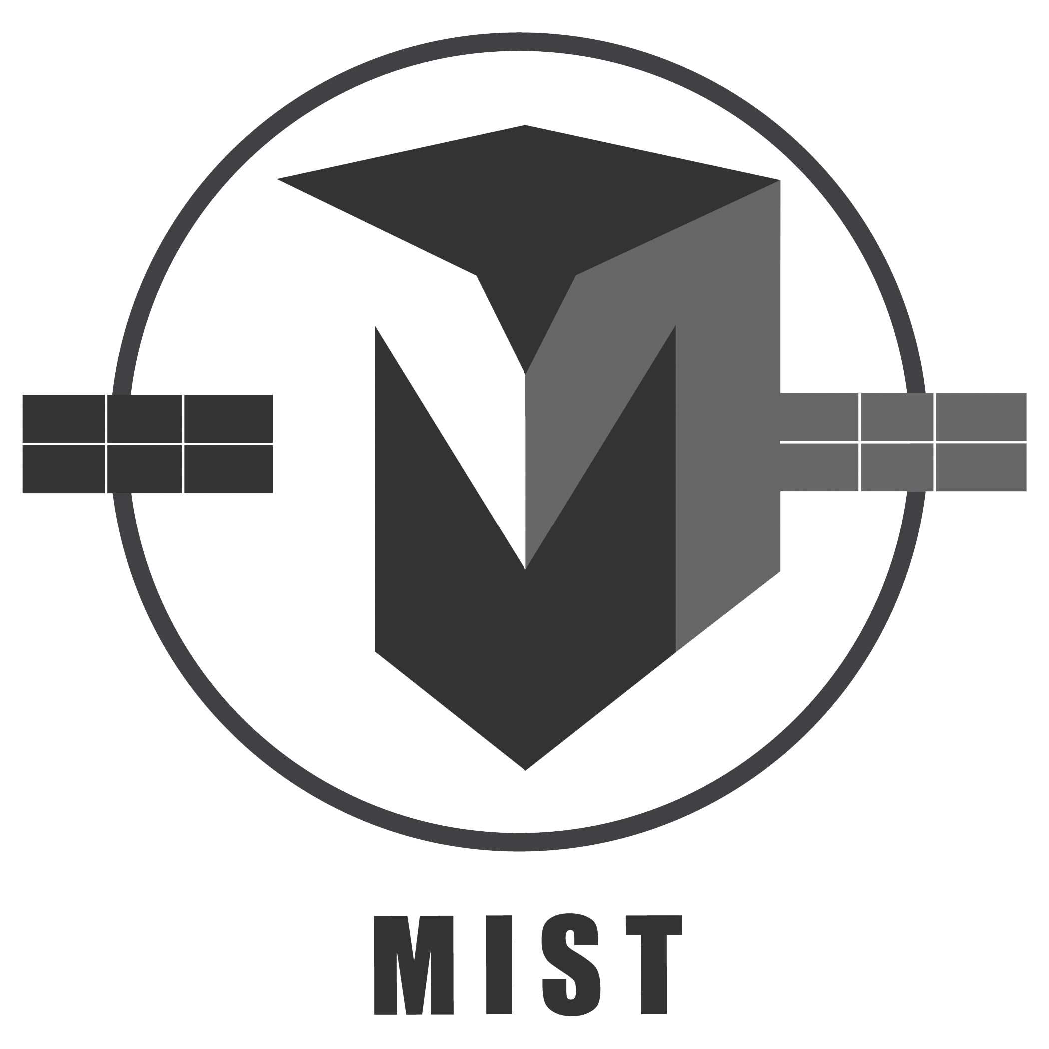 MIST – the MIniature Student saTellite